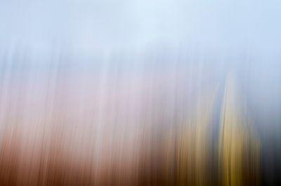 Tulips.Blur. 29.jpg