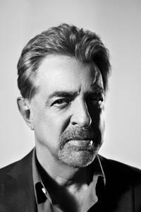 1joe_mantegna