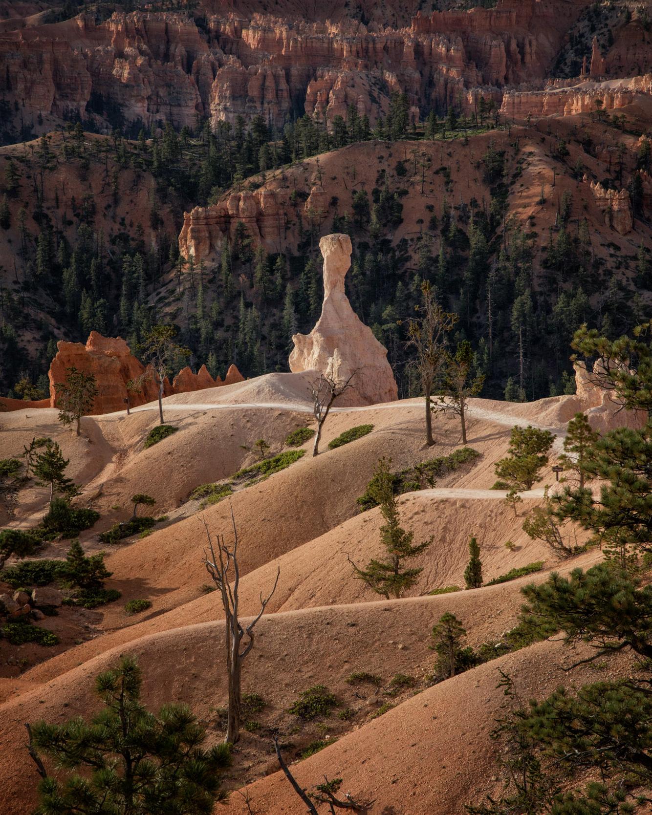Landscapes of Southern Utah