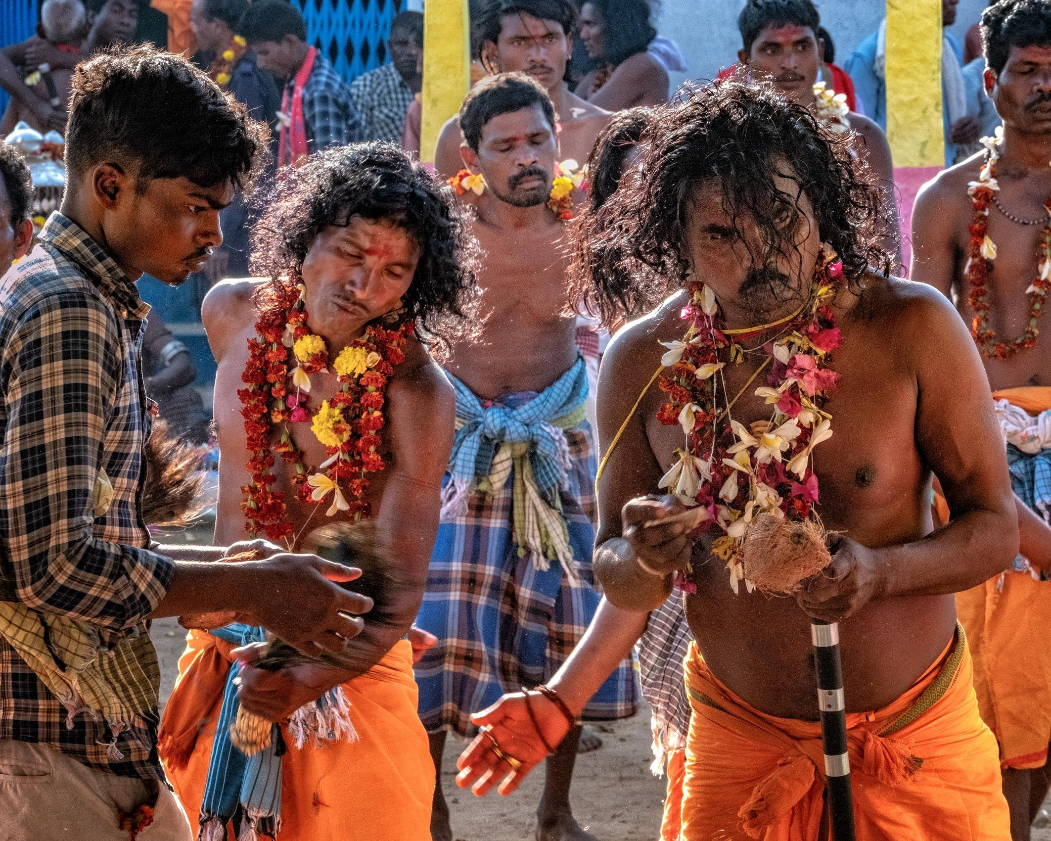 TRIBAL ODISHA AND CHHATTISGARH II:  Chhattisgarh's Madai Festival