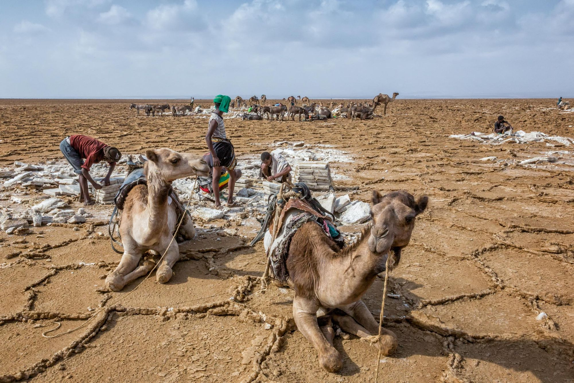 ETHIOPIA:  Into the Afar