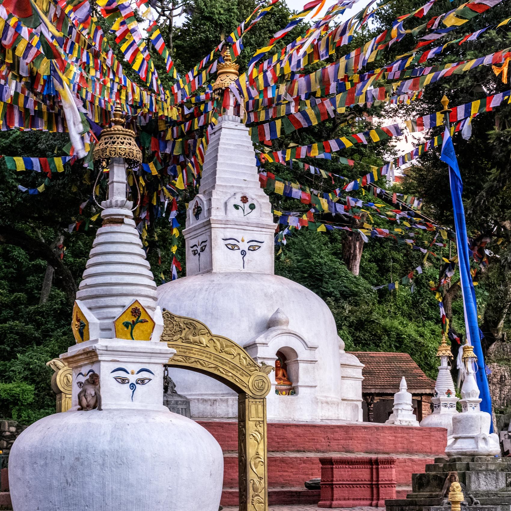 montrose.stupas-5.jpg