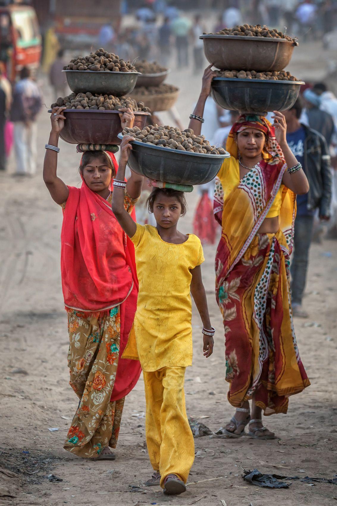 INDIA:  The Pushkar Mela III—The Dung Collectors