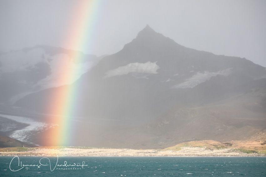 rainbow-over-the-penguin-colony_83a4507-saint-andrews-bay-south-georgia-island.jpg