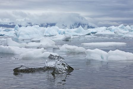 Ice-Sculpture-clean-piece-floating_S6A8137-Cuverville-Island-Antarctica.jpg