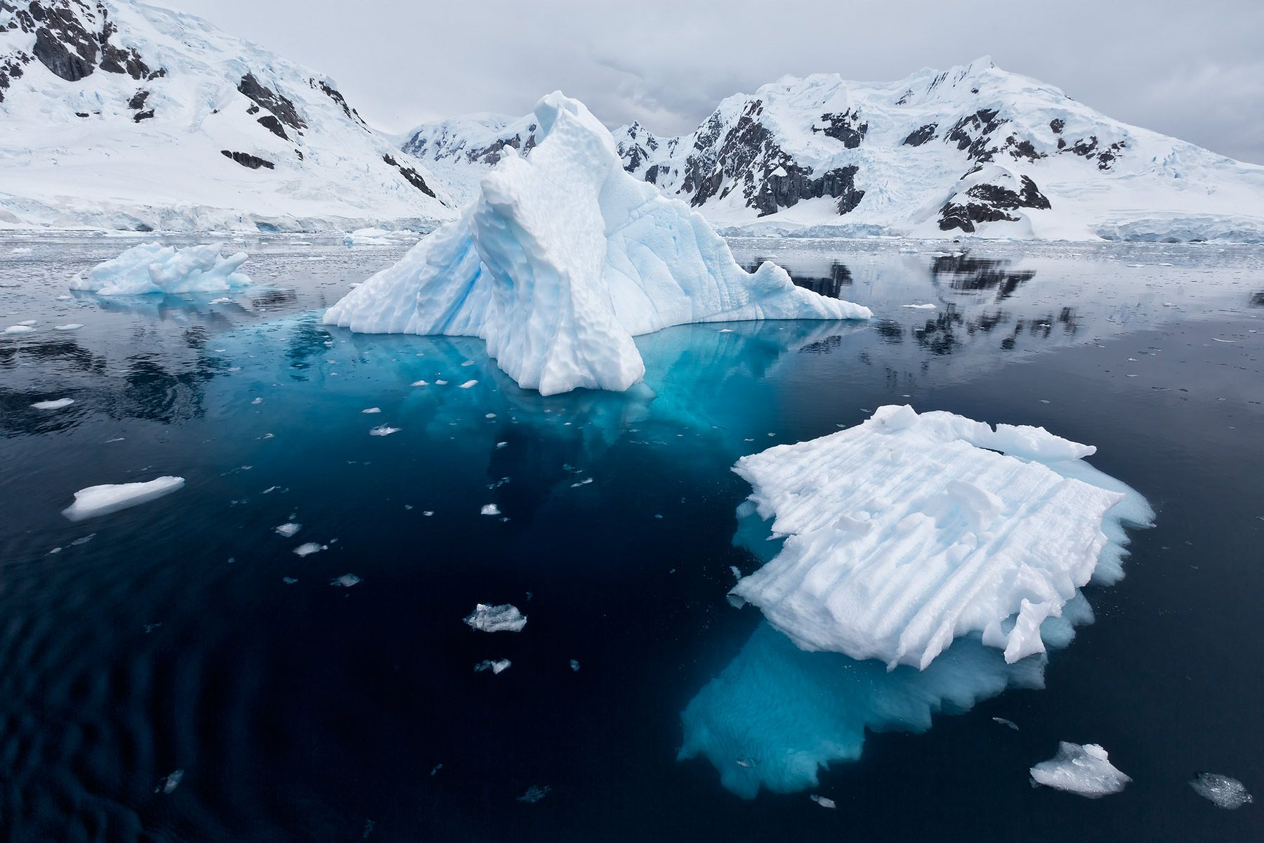 Small-ice-bergs-floating-in-Paradise-Bay_S6A9505-Paradise-Bay,-Antarctica.jpg