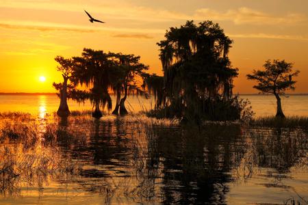 Sunrise at Lake Blue Cypress_S6A6960-Lake Blue Cypress, FL, USA.jpg