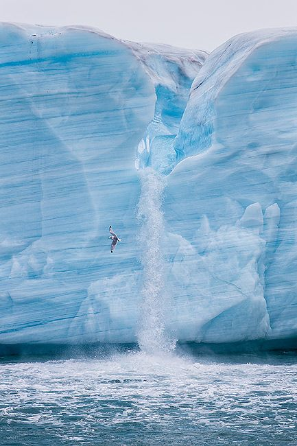 Ice-sheet-with-melt-water-river-vertical_B8R5116-Brasvellbreen-Svalbard-Arctic.jpg