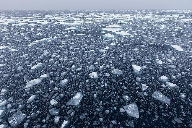 Pan-cake-and-sea-ice-abstract_S6A3177-Sea-ice-at-82-degree-North-Svalbard-Arctic.jpg