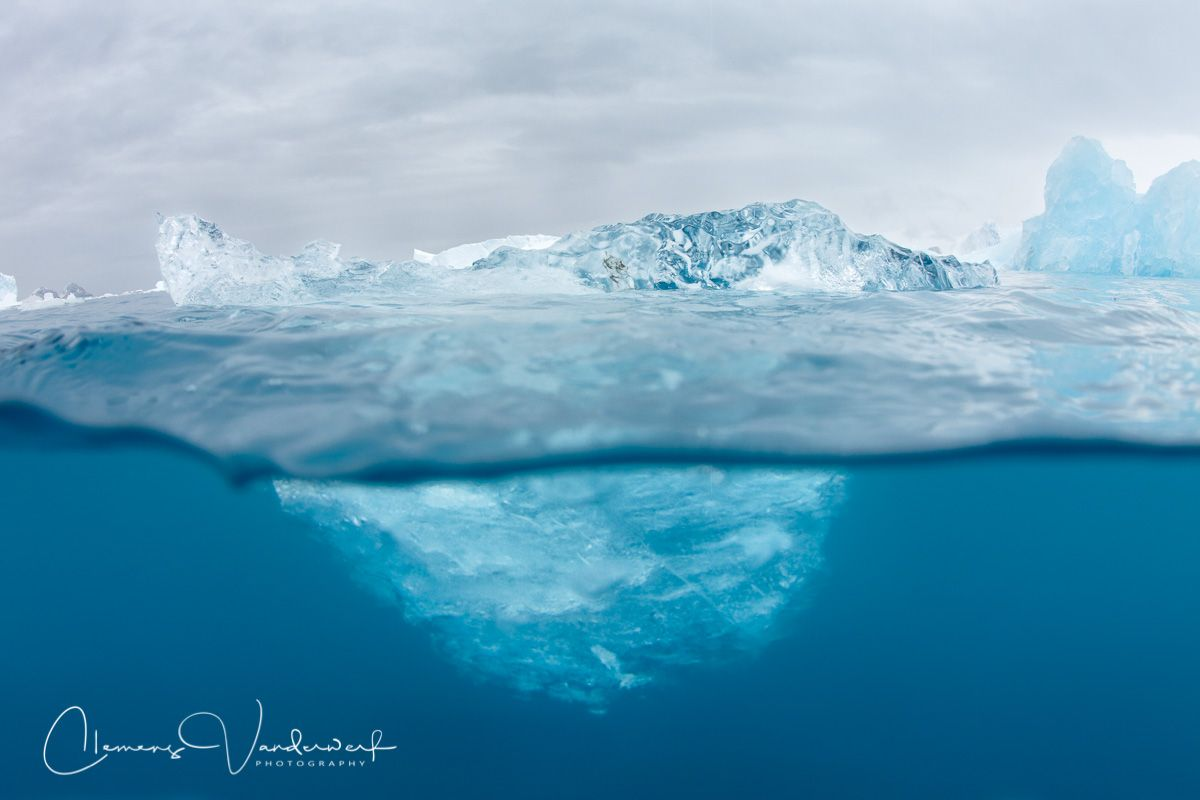 ice-berg-floating_s6a3836-cierva-cove-antarctica.jpg