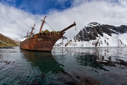 Shipwreck-at-Ocean-Harbour_E7T4512-Ocean-Harbour-South-Georgia-Islands.jpg