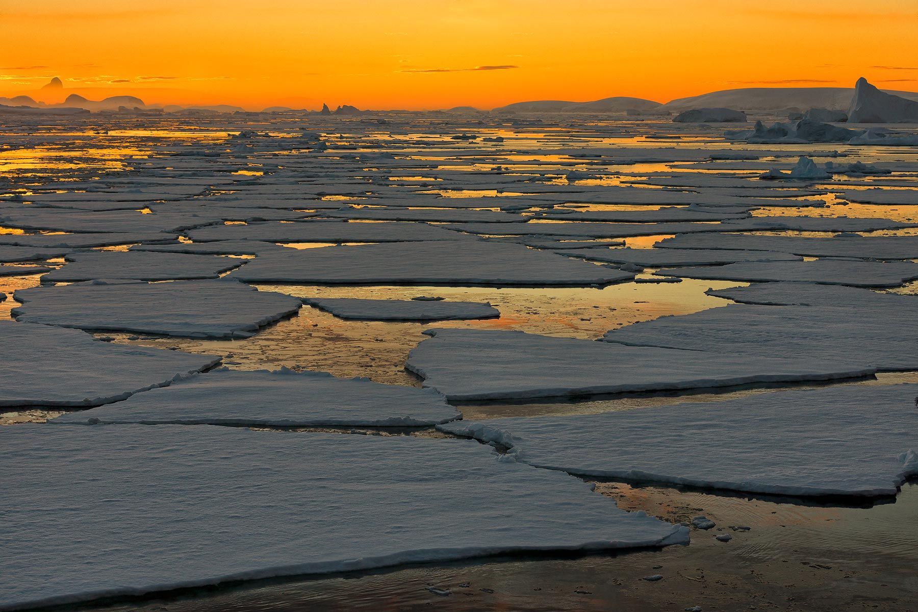 Sunset-over-the-sea-ice_S6A9040-Graham-Coast,-Antarctica.jpg