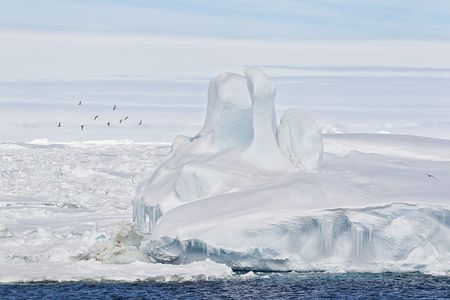 Sea-ice-stacked-up-in-the-Antarctic-Sound_BM7E4885-Antarctic-Sound-Antarctica.jpg