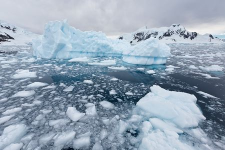 Iceberg-and-brash-ice-floating-in-Paradise-Bay_S6A9368-Paradise-Bay-Antarctica1.jpg