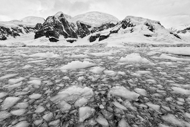 Brass-ice-in-Paradise-Bay_BW-2_S6A9349-Paradise-Bay-Antarctica.jpg