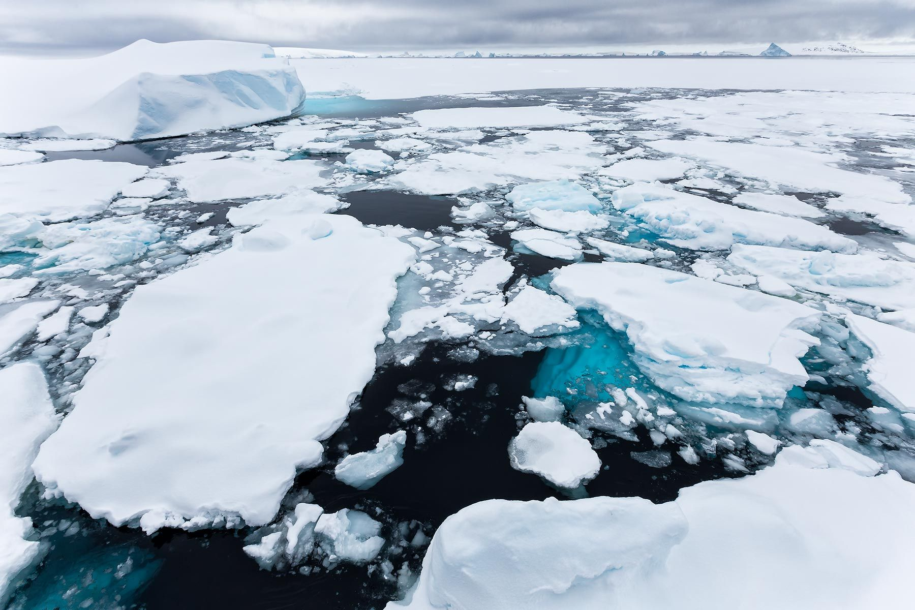 Sea-ice-near-Booth-Island_S6A5776-Lemaire-Channel,-Gerlache-Strait,-Antarctica.jpg