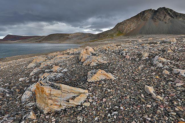 Beach-wit-stones-landscape_S6A2888-Murthsonfjorden-Svalbard-Arctic.jpg