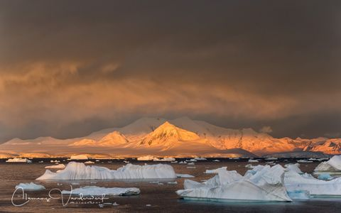 ice-bergs-floating-with-mountains-in-late-light_e7t2944-booth-island-antarctica.jpg