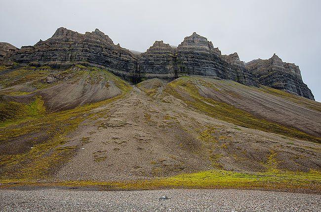Rockformationand-slope-with-vegatation_S6A4000-Skansbukta-Svalbard-Arctic.jpg