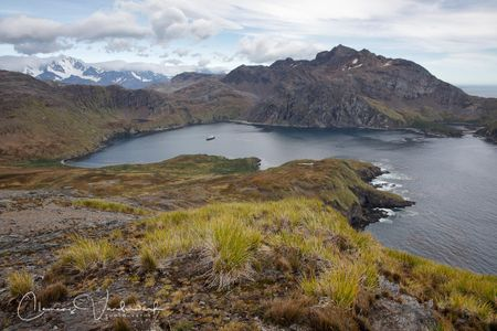 view-on-gothul-bay_83a4614-godthul-south-georgia-island.jpg