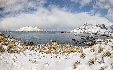 cooper-bay-overview-panorama.jpg