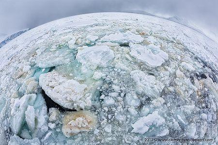 World-of-Antarctic-sea-ice_S6A0670-Neumayer-Channel-Antarctica.jpg