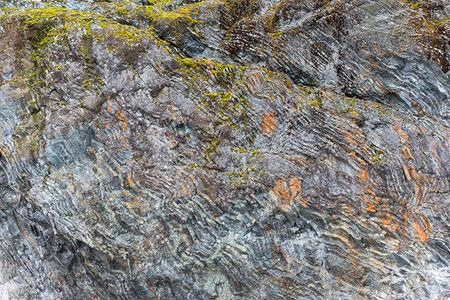 Rock-face-with-colorful-lichen_E7T3170-Paradise-Bay-Antarctica.jpg