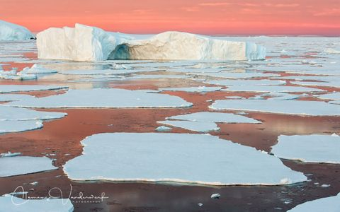 ice-berg-floating-among-sea-ice-with-pink-sky_s6a9029-graham-coast-antarctica.jpg