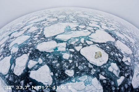 World-of-sea-ice-II-with-polar-bear-&-text_S6A3388-Sea-ice-at-82-degree-North,-Svalbard,-Arctic.JPG