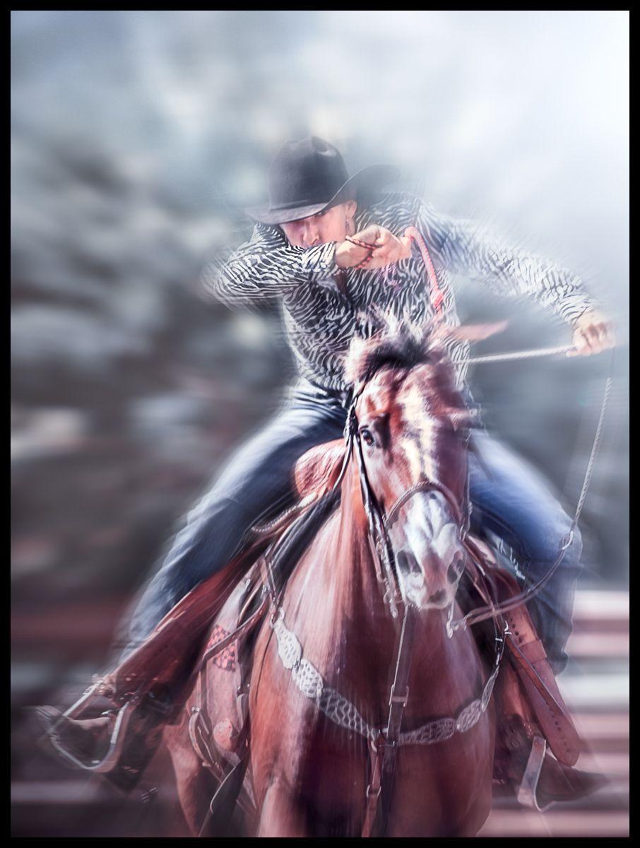 1horse_whip_oahu_rodeo