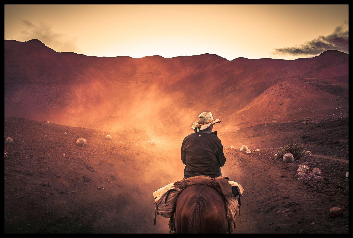 1island_cowboy_2