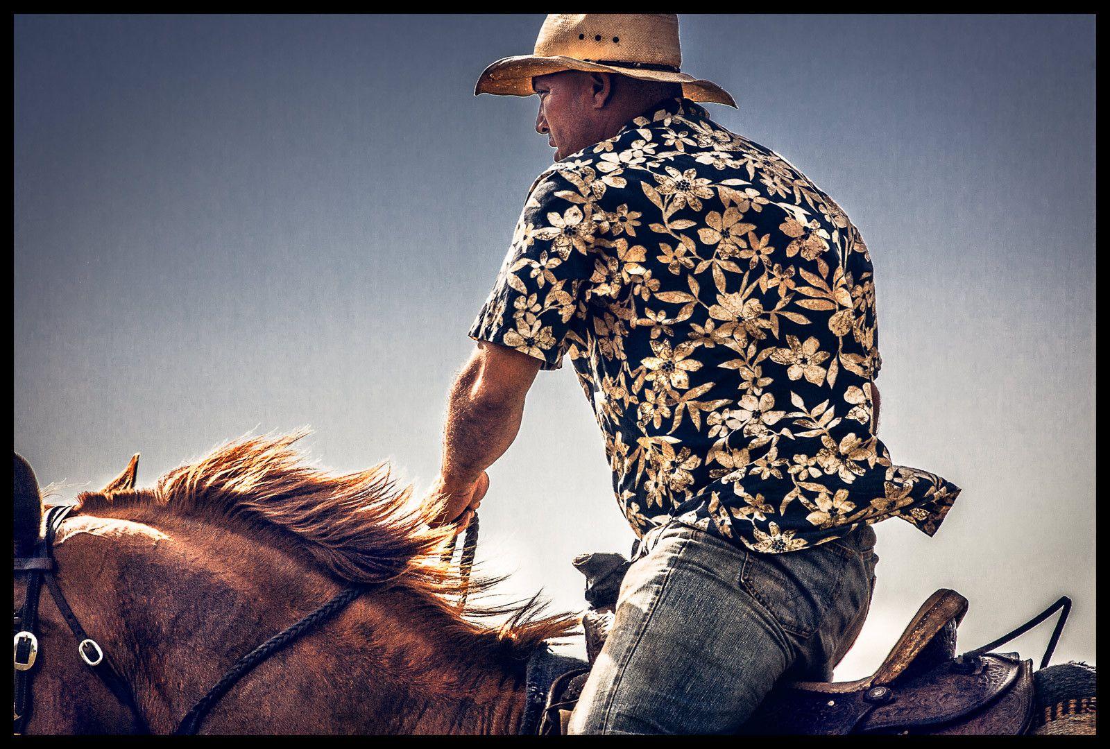 1hawaiian_island_cowboy