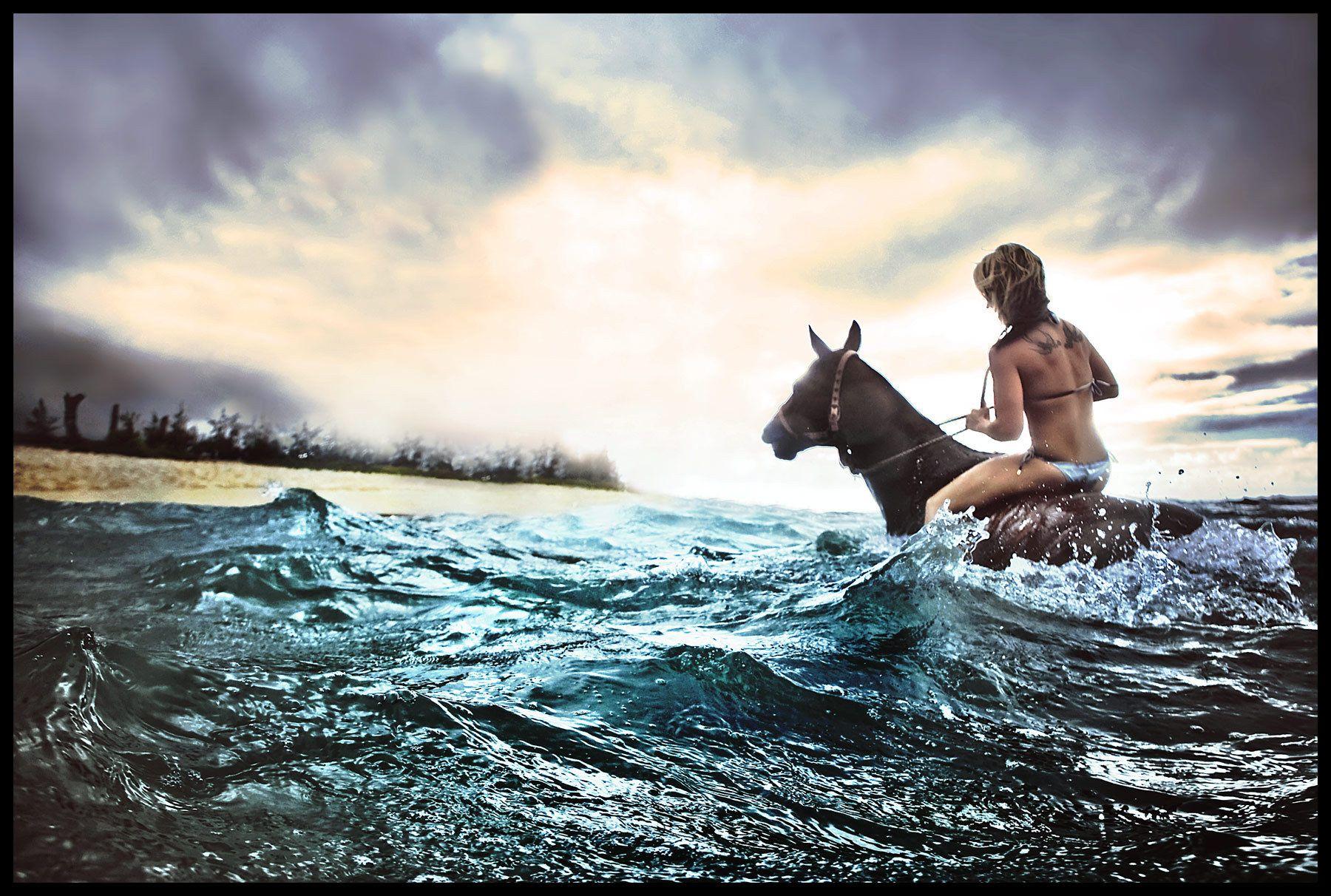 1surfing_horse