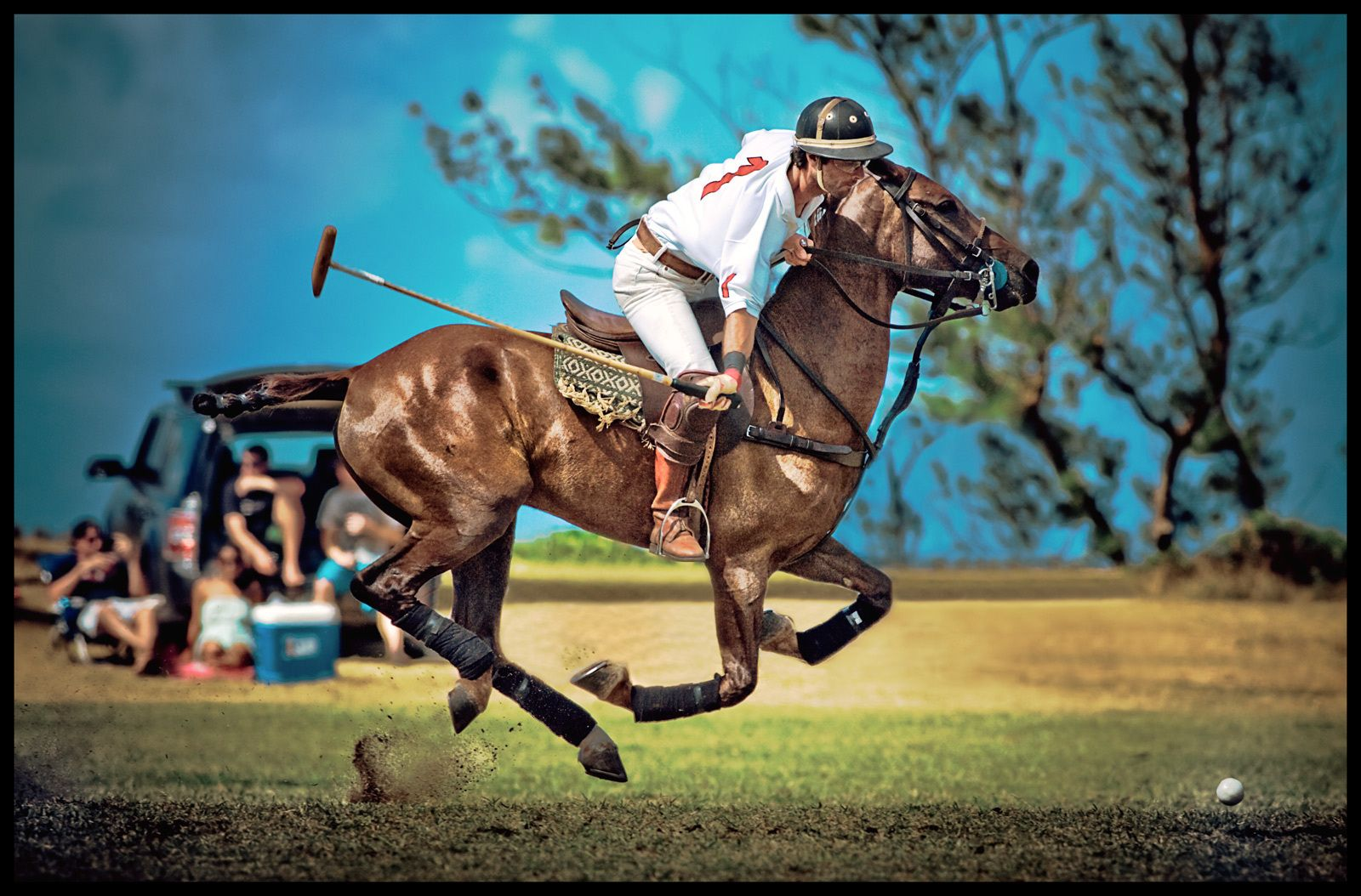 1hawaii_polo_action