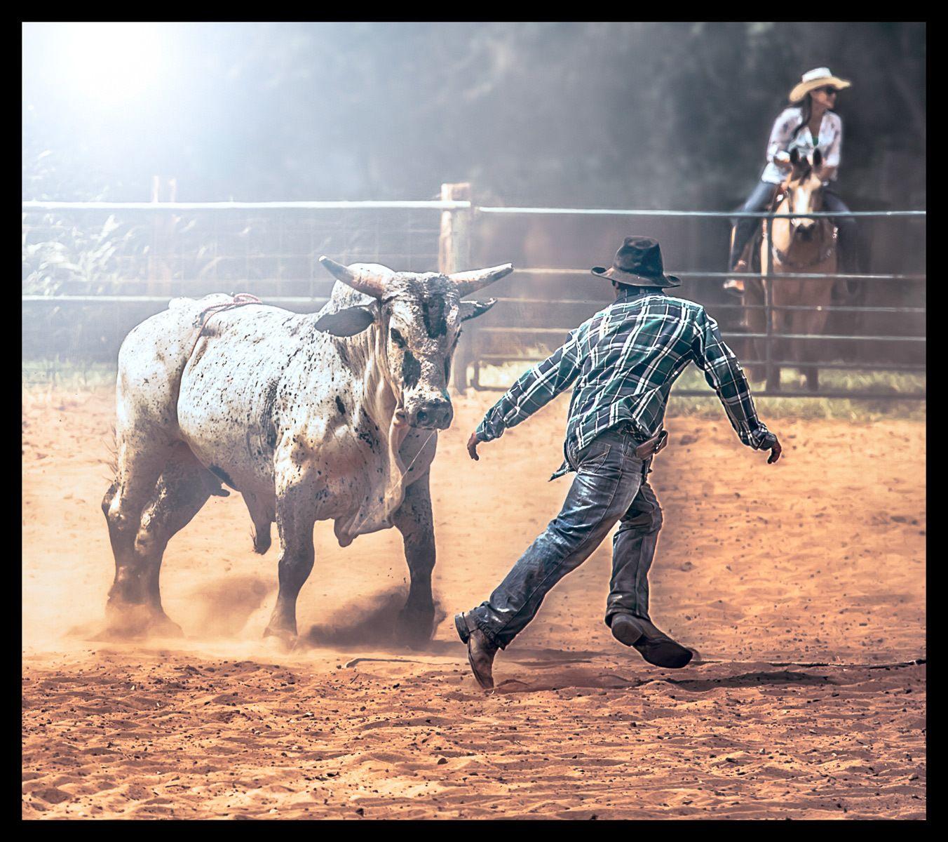 1island_cowboy
