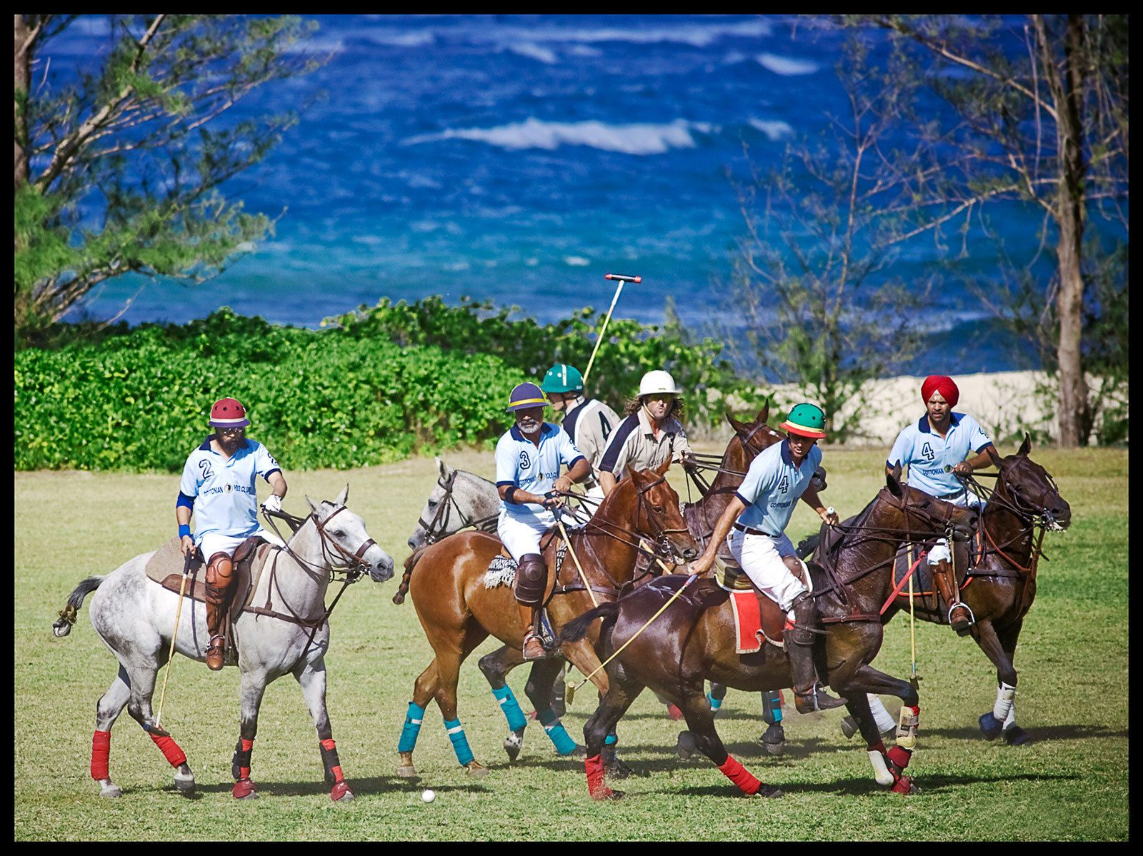 1hawaii_polo_club