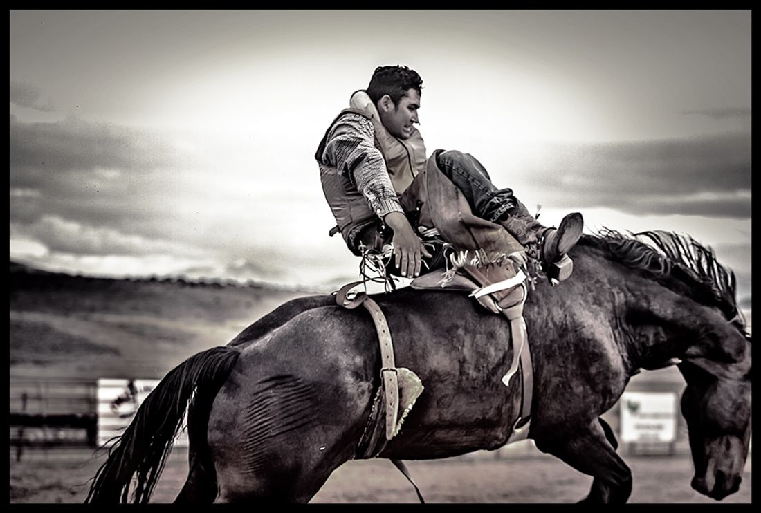 bronco-cowboy.jpg