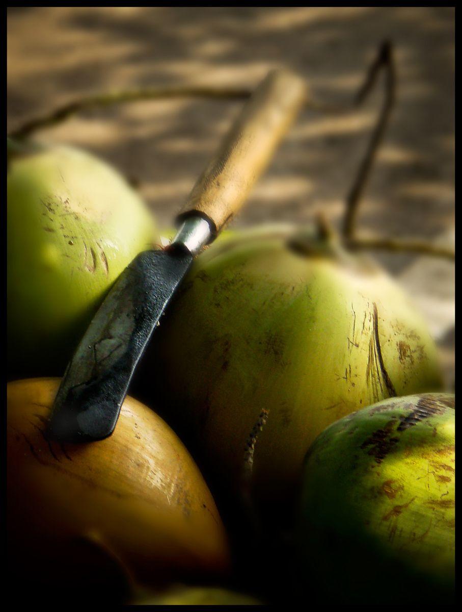 coconut farmer, Bali