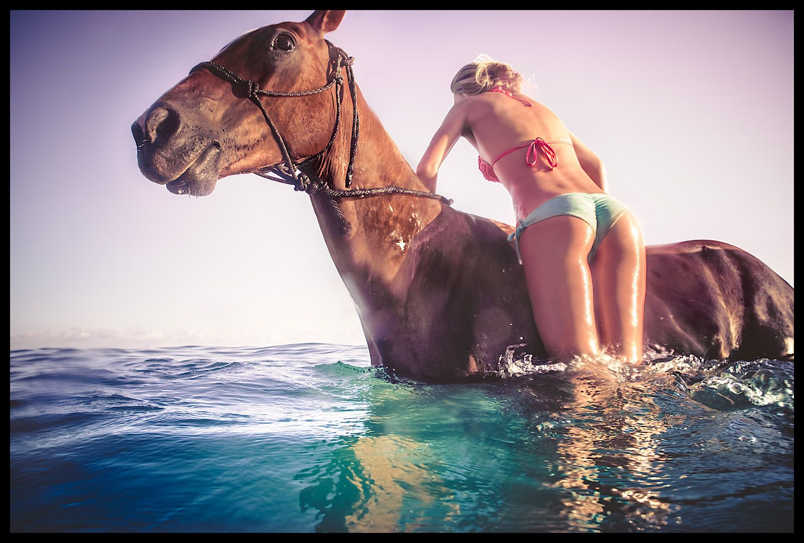 1bikini_horse_girl