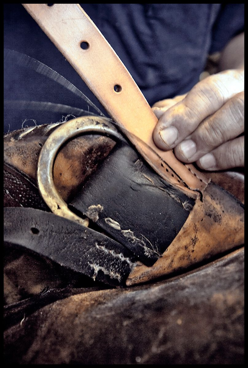 1hawaii_polo_saddle_maker