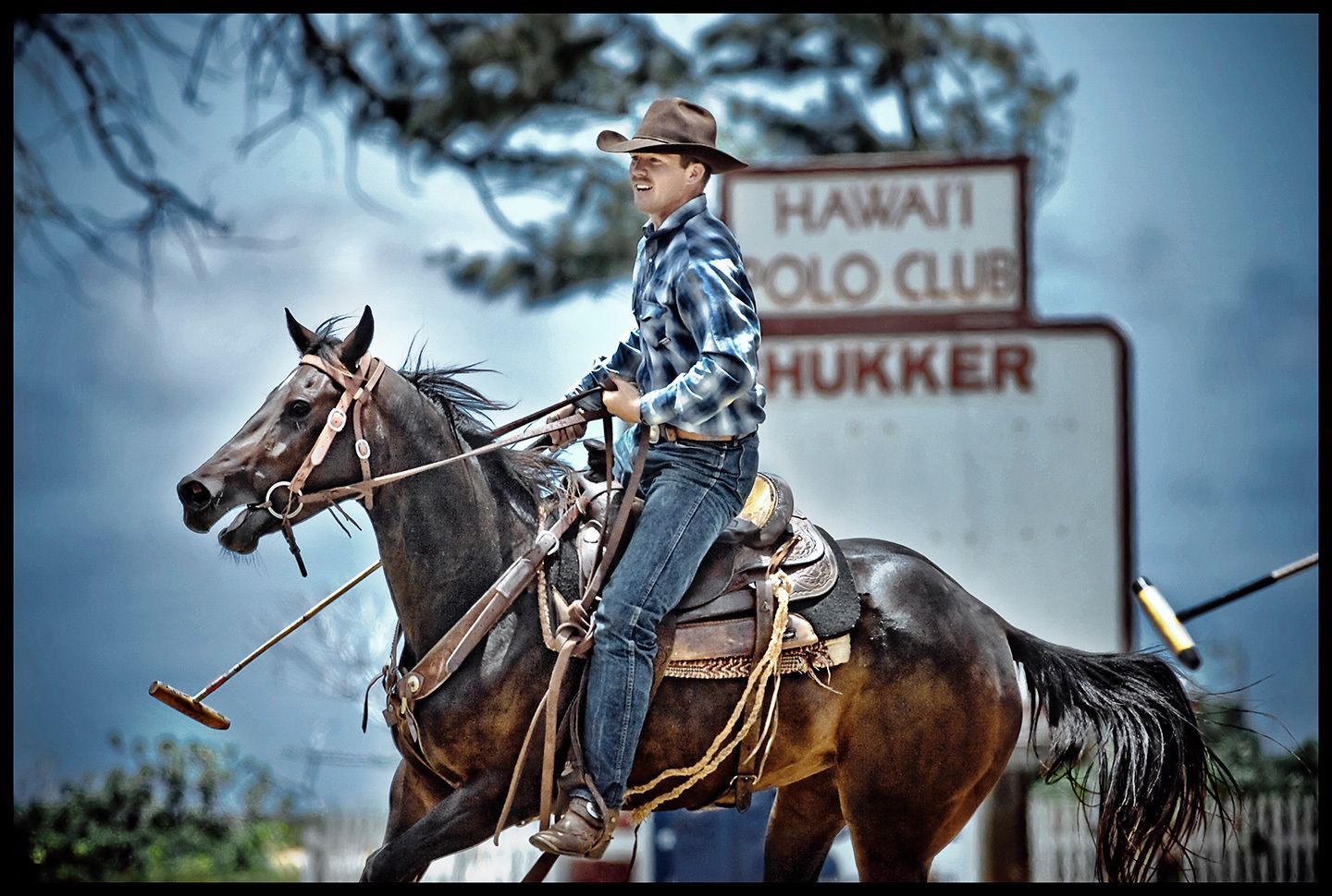 1hawaii_cowboy_polo