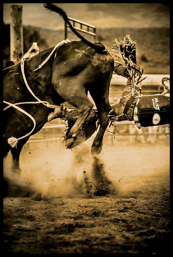 colordo-rodeo-bullrider.jpg