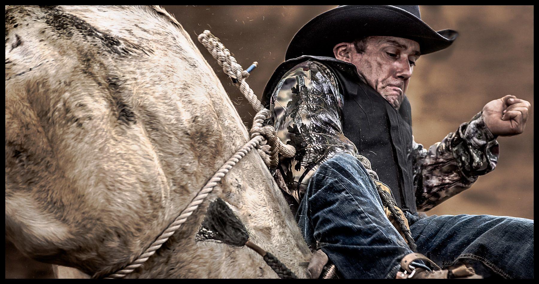 1bull_rider_rodeo
