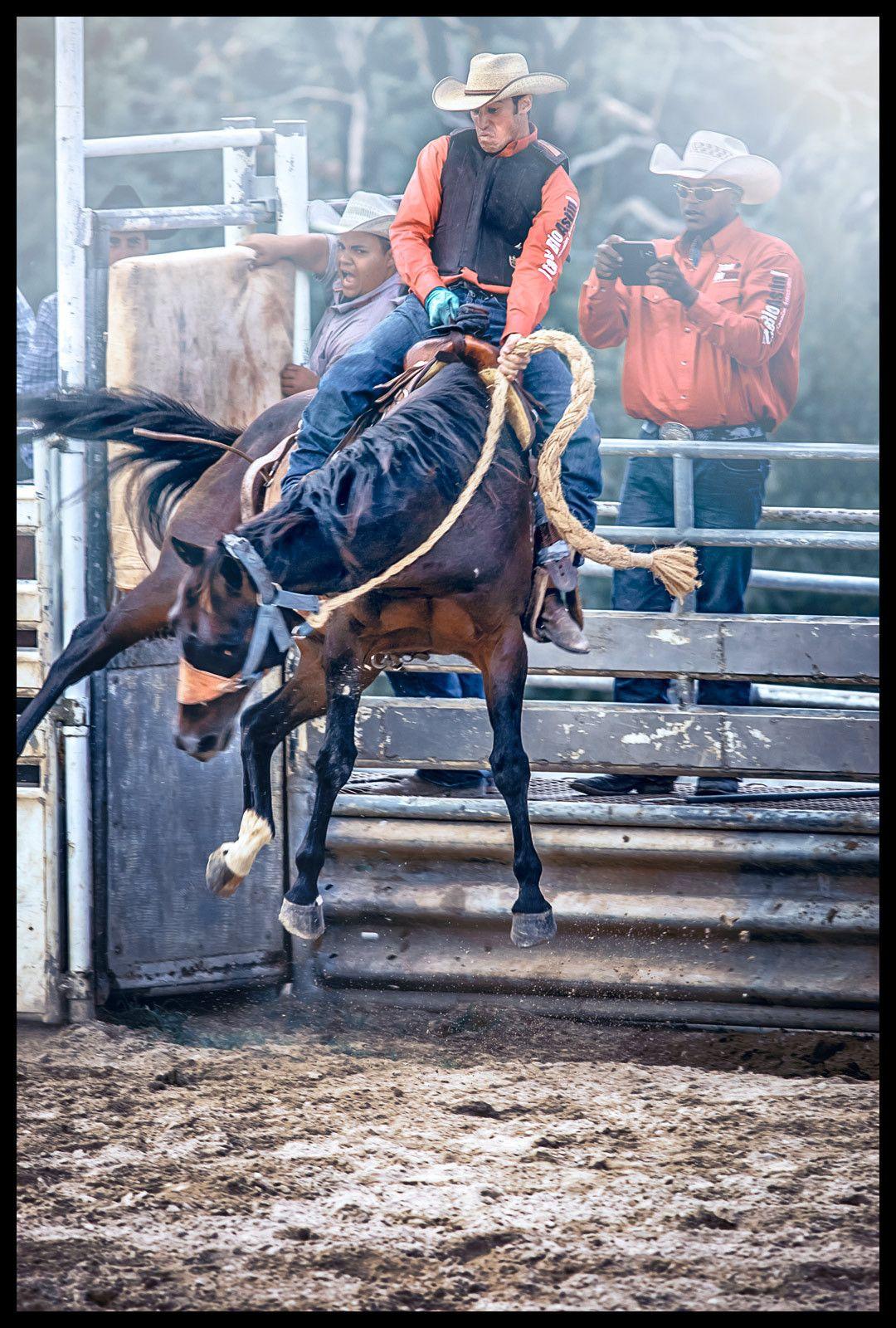 1bronco_rider