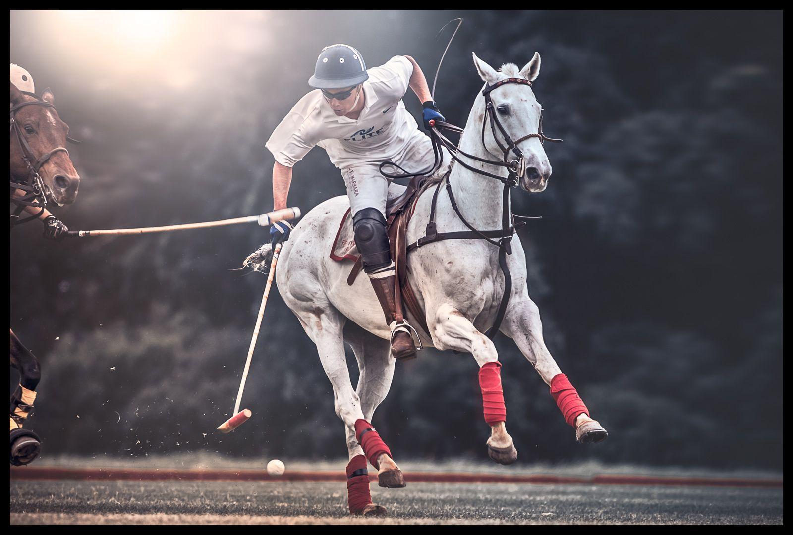 1maui_polo_kids_action_horse