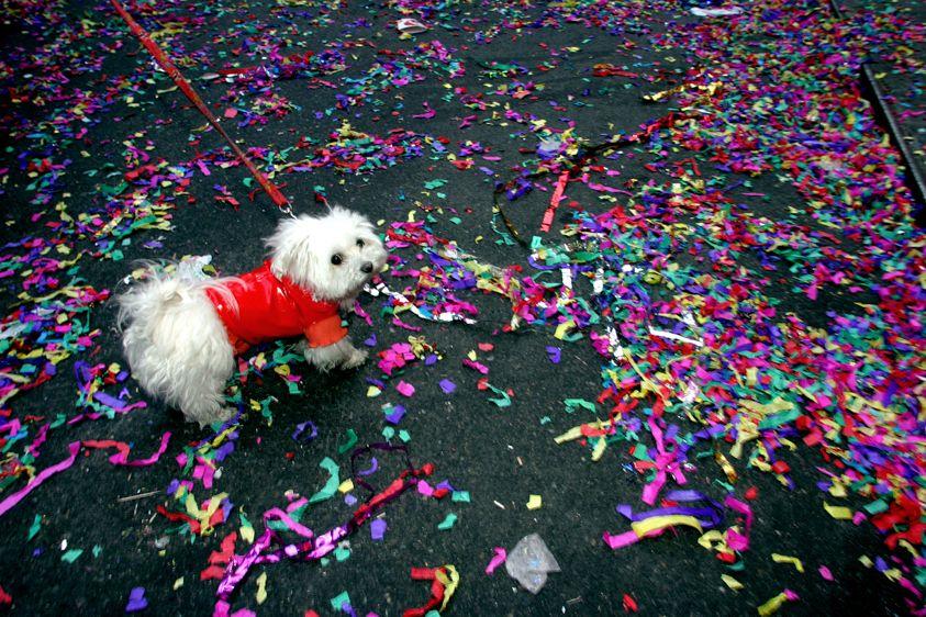 Lunar New Year Celebration,  NYC