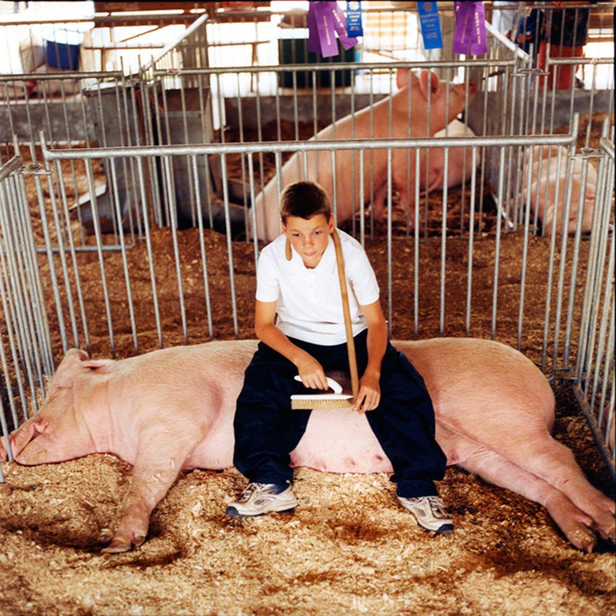 "Client: Kehrer Verlag Heidelberg""Till the Cows Come Home: County Fair Portraits"""