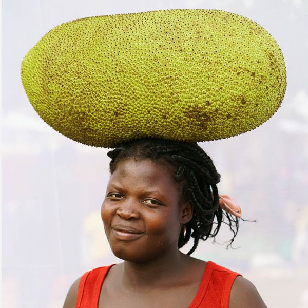Jackfruit.Sq.jpg