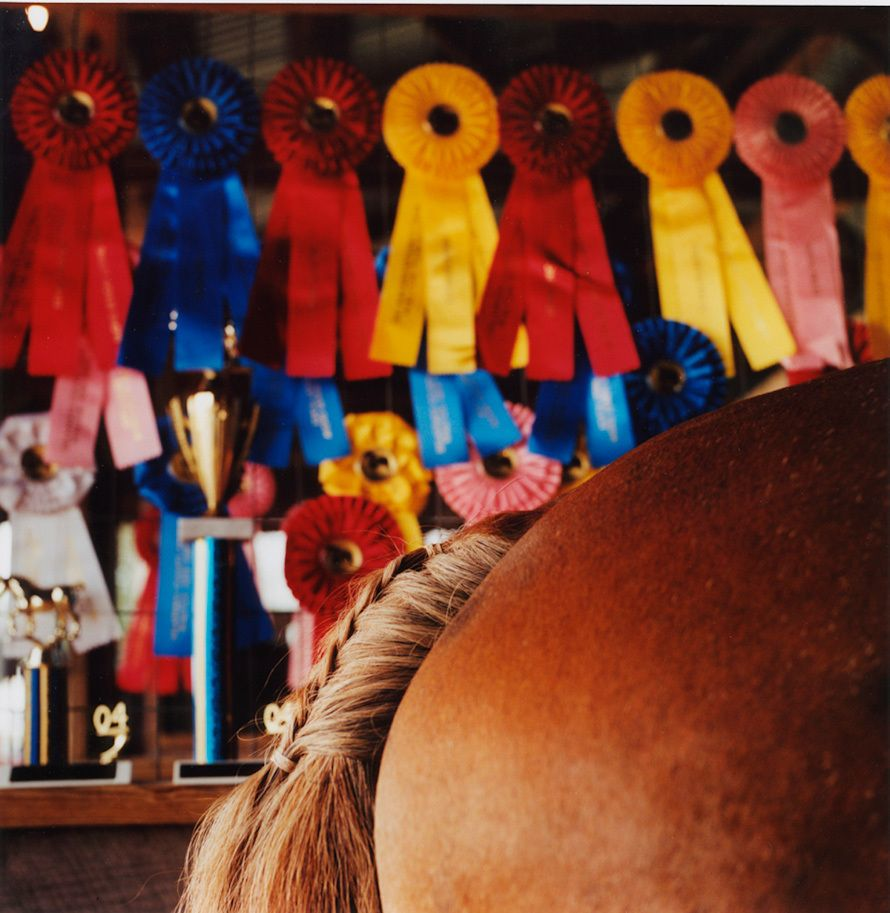 """Draft Horse"" Delaware County Fair 2004"