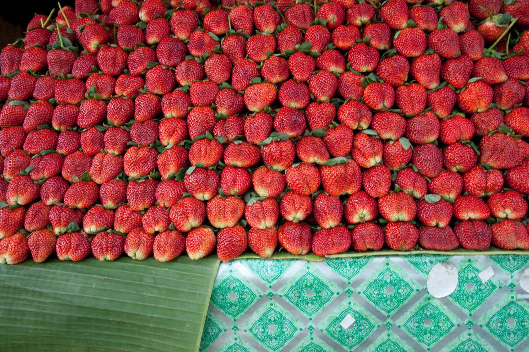 Bangkok, Thailand strawberries